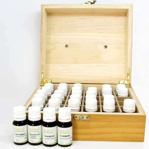 Professional Aromtherapy Kit